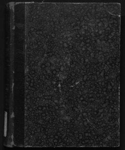 Corso teorico-pratico di diritto civile per Francesco Ricci... Volume 10 : Della trascrizione, dei privilegi e delle ipoteche, della separazione del patrimonio e del defunto...