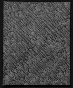 Catalogo delle opere esposte con prefazione di Claudio Treves