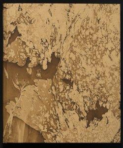 Esposizione d'arte degli alleati organizzata dal principe Jacques De Broglie a beneficio della Croce Rossa italiana e delle opere di assistenza civile, sotto l'alto patronato di S.A.R. la duchessa Elena d'Aosta catalogo