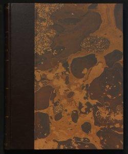 3: Album pittorico illustrato da D. A