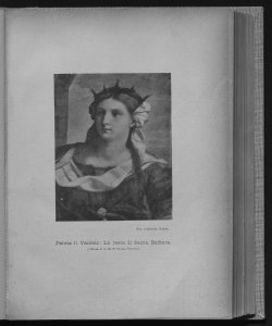 1898-1899 Numeri 7-12