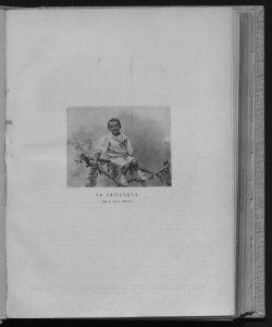 1900-1901 Numeri 19-24
