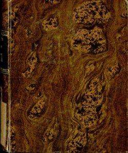Bergamo, o sia Notizie patrie. Almanacco  per l'anno 1870