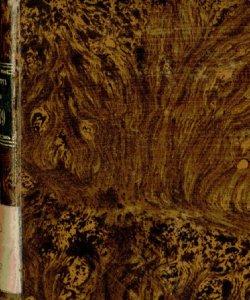 Bergamo, o sia Notizie patrie. Almanacco  per l'anno 1878