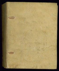 ms.E._VII.28