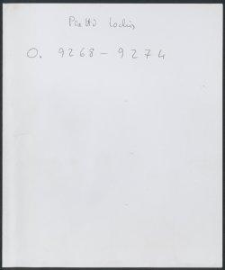 Tantum ergo| A Voce Sola Con Stromenti : 1780 / Del Signor Gregorio Sciroli