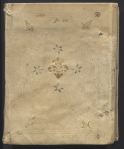 Manoscritti Polinoriani