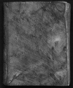 Tractatus de duobus fratribus et aliis sociis. Authore Petro de Vbaldis Perusino ...