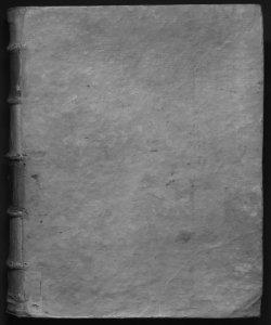 Theatrum veritatis, et iustitiae ...Volume 2 De regalibus ...