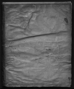Tractatus criminalis D. Tiberii Deciani Vtinensis...Volume 1