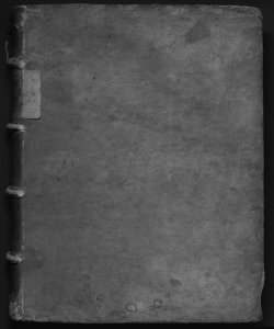 Tractatus criminalis D. Tiberii Deciani Vtinensis, ... Volume 2