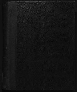 Il digesto italiano enciclopedia metodica e alfabetica di legislazione, dottrina e giurisprudenza ... diretta da Luigi Lucchini ... Volume 2.1