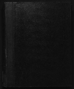 Il digesto italiano enciclopedia metodica e alfabetica di legislazione, dottrina e giurisprudenza ... diretta da Luigi Lucchini...Volume 3.2