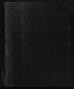 Il  digesto italiano enciclopedia metodica e alfabetica di legislazione, dottrina e giurisprudenza ... diretta da Luigi Lucchini. -  Volume 10