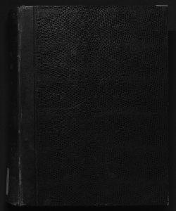 Il digesto italiano enciclopedia metodica e alfabetica di legislazione, dottrina e giurisprudenza ... diretta da Luigi Lucchini ...