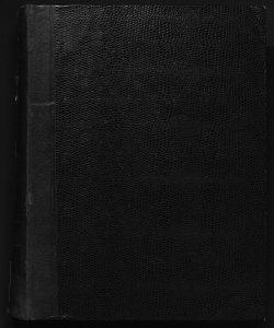 Il digesto italiano enciclopedia metodica e alfabetica di legislazione, dottrina e giurisprudenza ... diretta da Luigi Lucchini... Volume 13.1