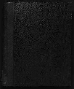 Il digesto italiano enciclopedia metodica e alfabetica di legislazione, dottrina e giurisprudenza ... diretta da Luigi Lucchini... Volume 13.2