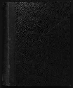 Il digesto italiano enciclopedia metodica e alfabetica di legislazione, dottrina e giurisprudenza ... diretta da Luigi Lucchini... Volume 15.1