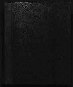 Il digesto italiano enciclopedia metodica e alfabetica di legislazione, dottrina e giurisprudenza ... diretta da Luigi Lucchini... Volume 15.2