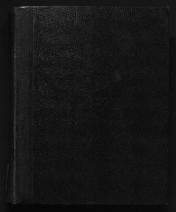 Il digesto italiano enciclopedia metodica e alfabetica di legislazione, dottrina e giurisprudenza ... diretta da Luigi Lucchini [poi] diretta da Luigi Lucchini... Volume 18.1