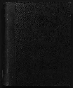 Il digesto italiano enciclopedia metodica e alfabetica di legislazione, dottrina e giurisprudenza ... diretta da Luigi Lucchini ... Volume 18.2