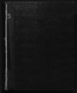 Il digesto italiano enciclopedia metodica e alfabetica di legislazione, dottrina e giurisprudenza ... diretta da Luigi Lucchini ...Volume 19.2