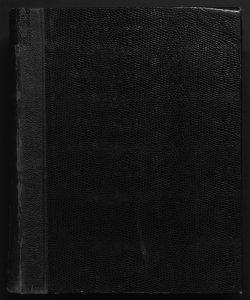 Il digesto italiano enciclopedia metodica e alfabetica di legislazione, dottrina e giurisprudenza ... diretta da Luigi Lucchini ...Volume 20.2