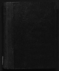Il digesto italiano enciclopedia metodica e alfabetica di legislazione, dottrina e giurisprudenza ... diretta da Luigi Lucchini ...Volume 21.2