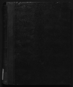 Il digesto italiano enciclopedia metodica e alfabetica di legislazione, dottrina e giurisprudenza ... diretta da Luigi Lucchini ... Volume 22.4