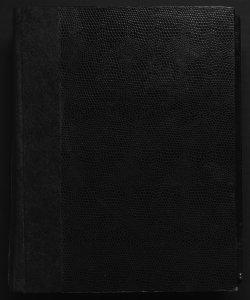 Il digesto italiano enciclopedia metodica e alfabetica di legislazione, dottrina e giurisprudenza ... diretta da Luigi Lucchini...Volume 23.1