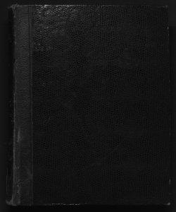 Il digesto italiano enciclopedia metodica e alfabetica di legislazione, dottrina e giurisprudenza ... diretta da Luigi Lucchini ...Volume 23.2
